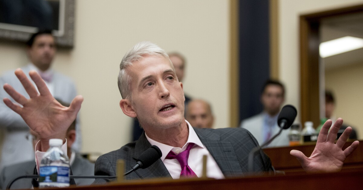 Trey Gowdy: Hard to imagine Congress investigating who wrote an op-ed