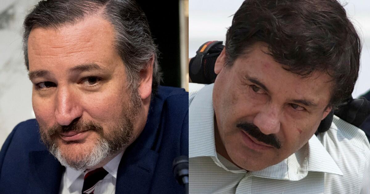 Ted Cruz: Use money from 'El Chapo' drug empire to 'build