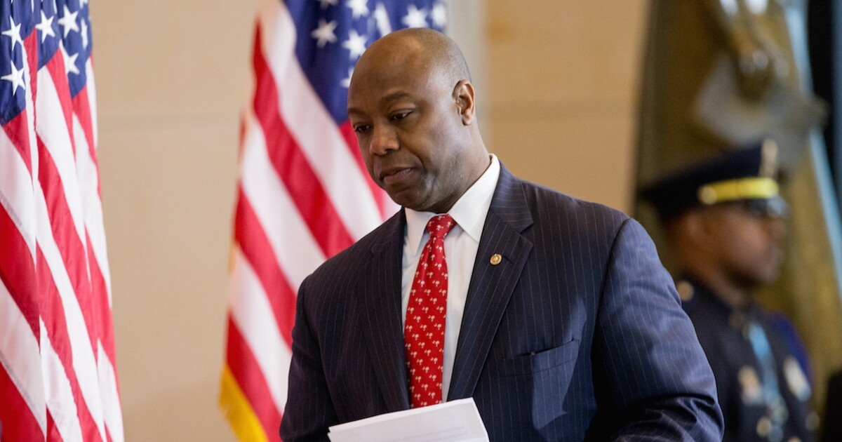 'Hot mess': Tim Scott rips Democrats for 'pandering' to black voters with 'patronizing' debate comments