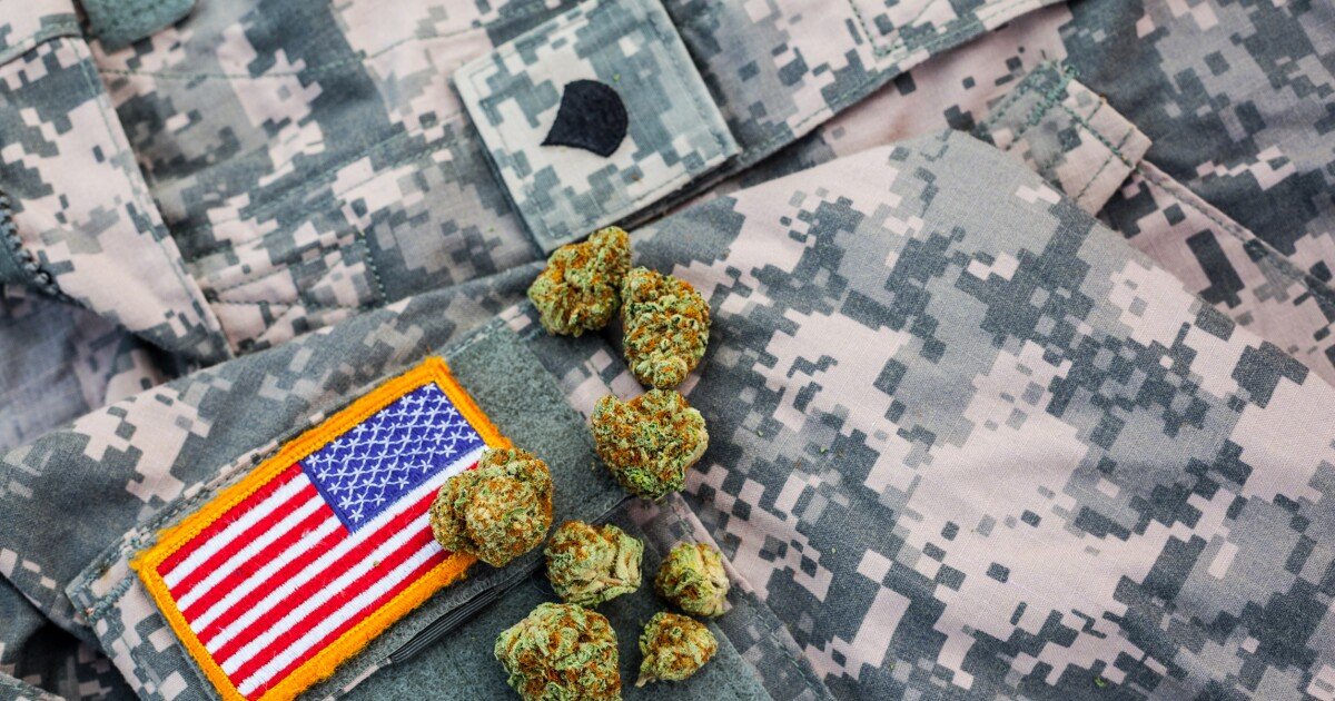 Rep. Seth Moulton: Let's talk about cannabis and the VA